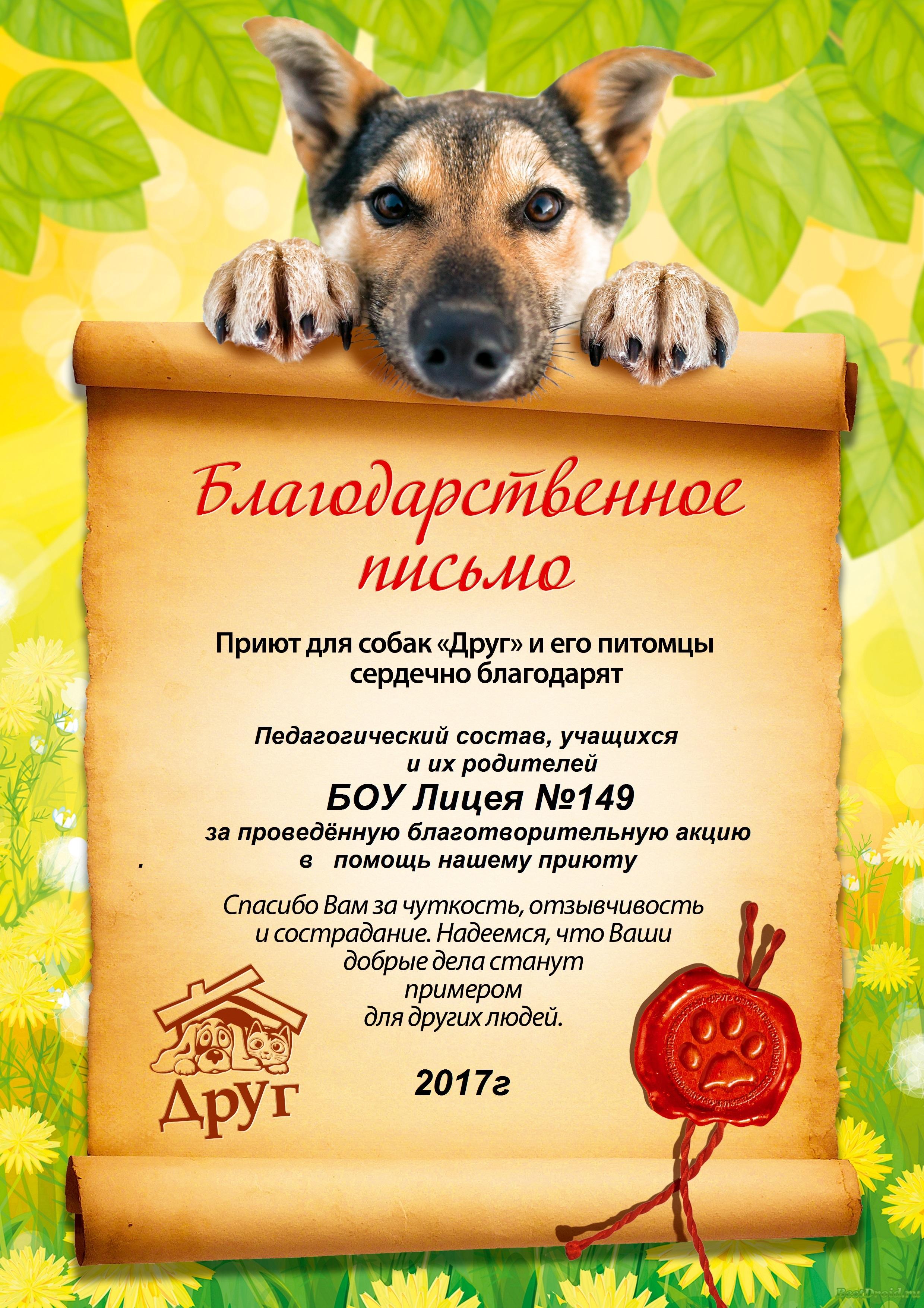 Текст для поздравление собаки